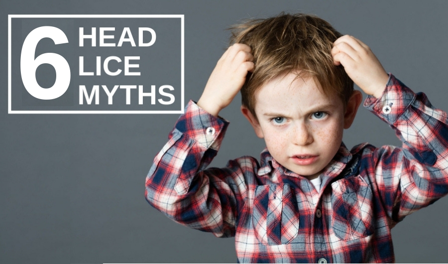 Top Six Myths About Head Lice