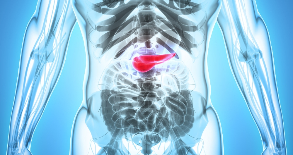 Pancreatic Cancer on the Rise: Warning Signs To Watch For